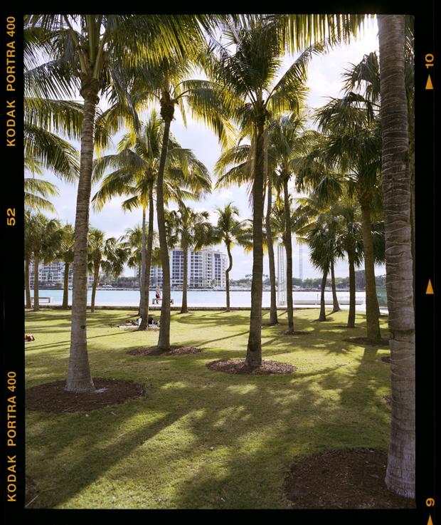 Miami23