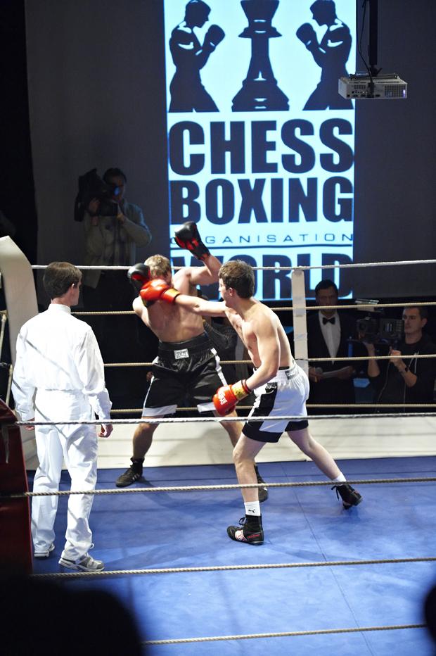 Schachboxen 10