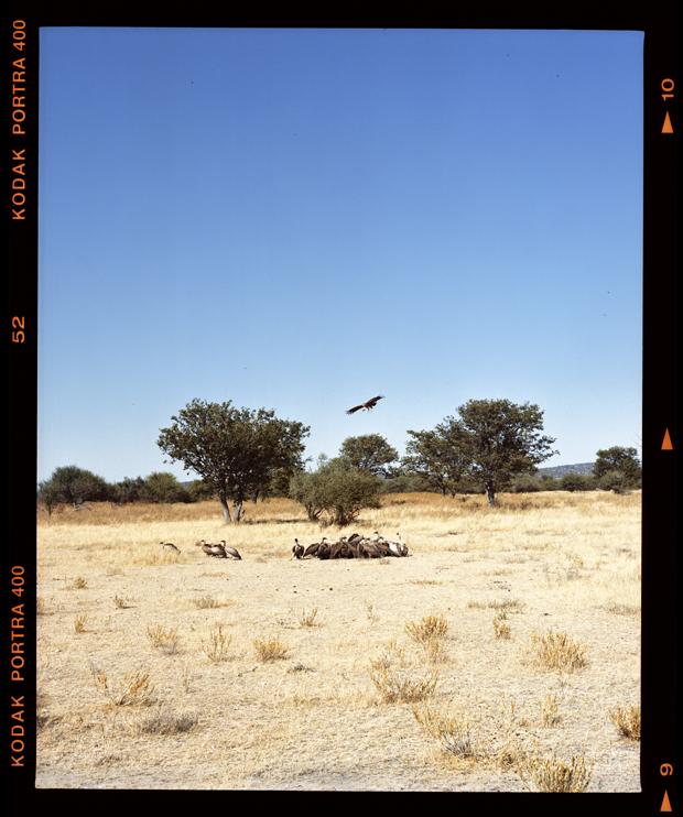 Namibia_24