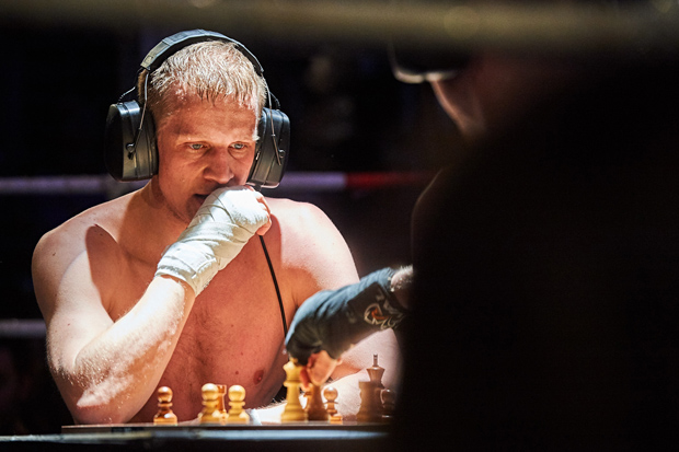 Schachboxen 11