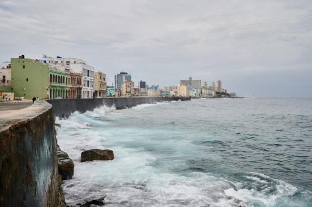 Havanna 41